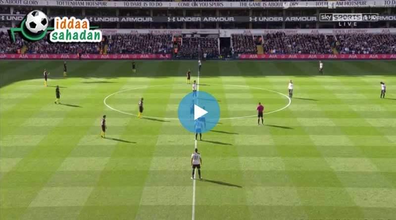 Tottenham Manchester City Maçı Özeti