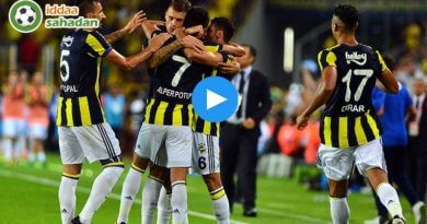 Fenerbahçe 4-1 Sivasspor Maç Özeti ve Goller (19 Kasım 2017)